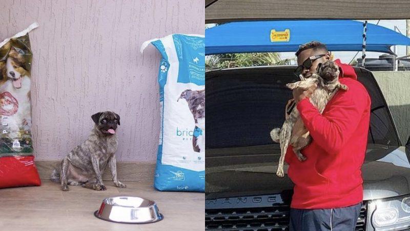 Your Chairman's Dog Get Ambassadorial Deal? – Medikal's Dog Gets Ambassadorial Dog